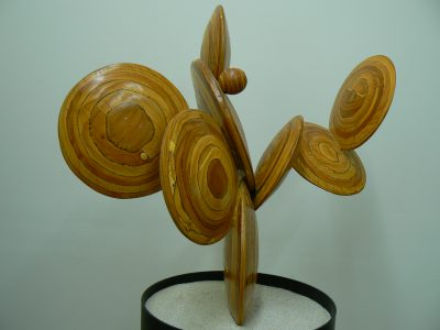 Disc Cactus, lamaply, sand and painted steel. Sculpture for sale