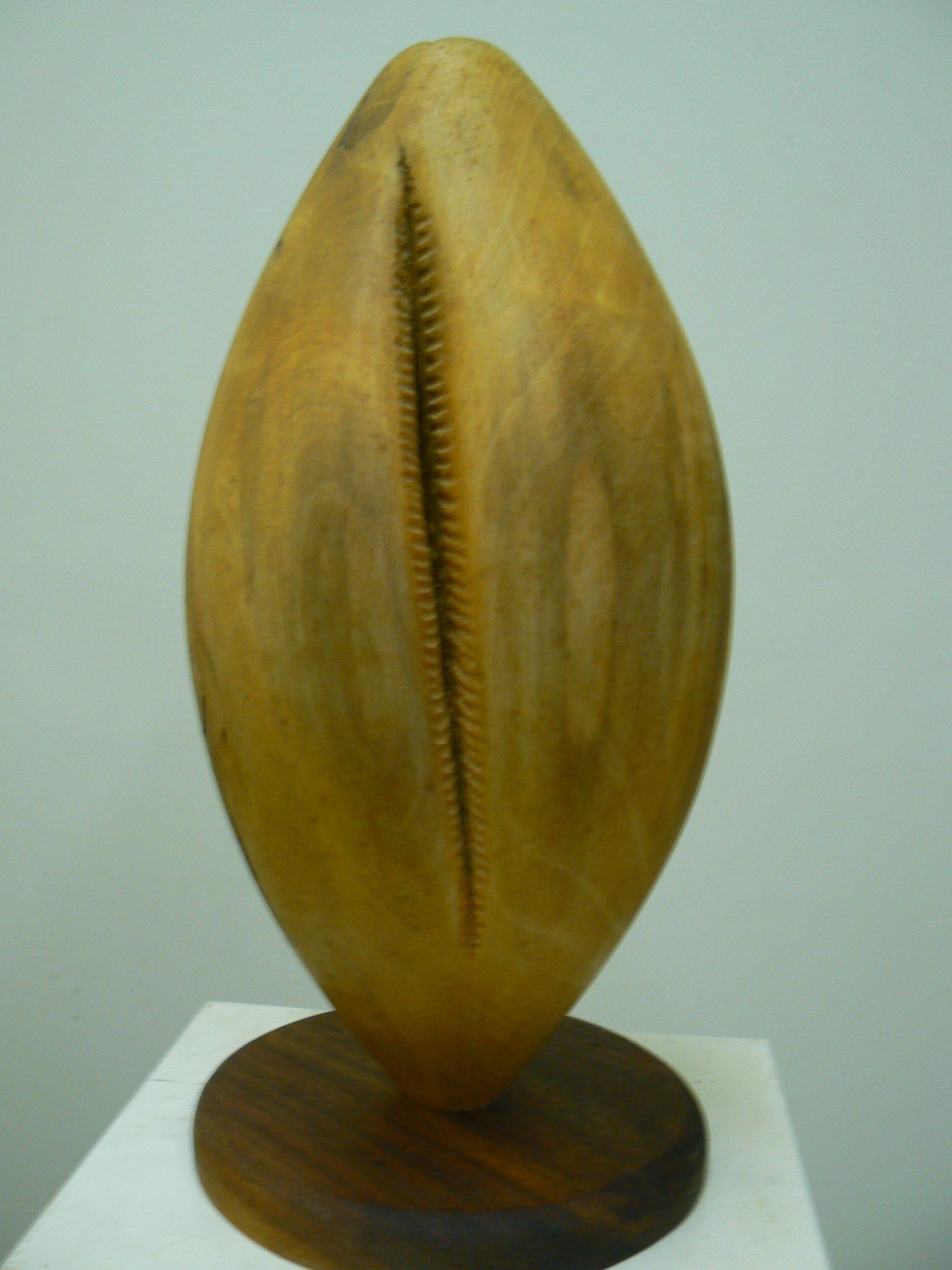Football, Holly wood