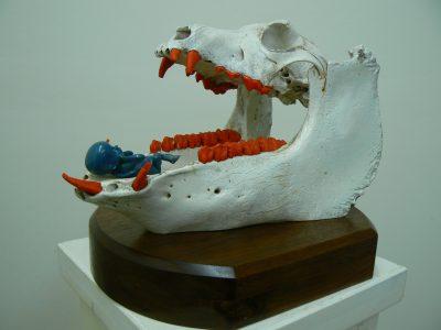 America's Safety Womb Bone, Laminated Mahogany